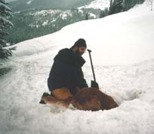 Cooper makes a find at Stevens Pass - 62K
